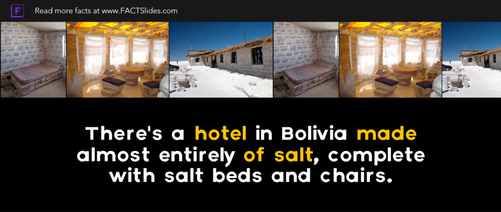 Bolivia Facts 21 Facts About Bolivia Factslides